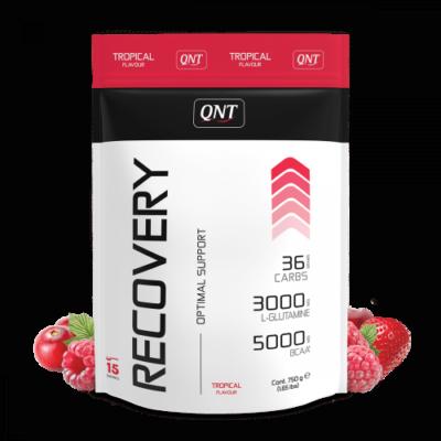 QNT Energy Powder Red Fruits 900 Gram